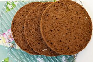 tort-shokoladnyj